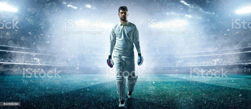 Cricket: Player on the stadium stock photo