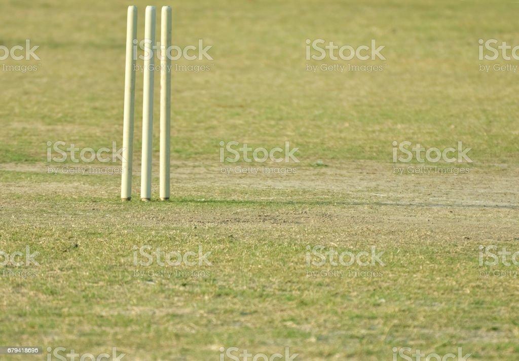 cricket stump royalty-free stock photo