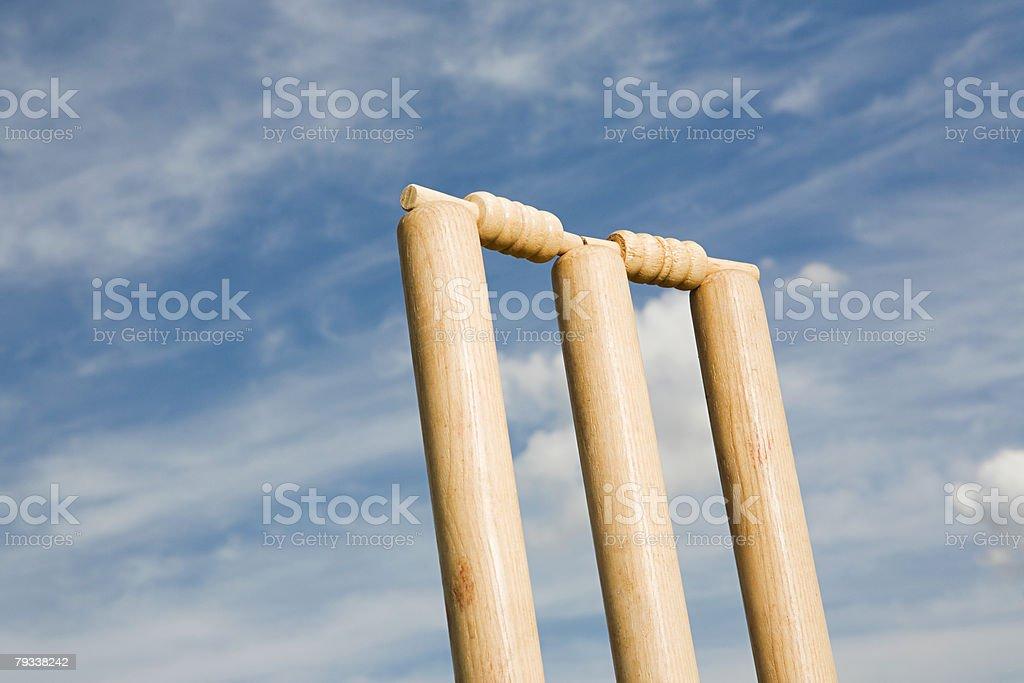 A cricket stump 免版稅 stock photo