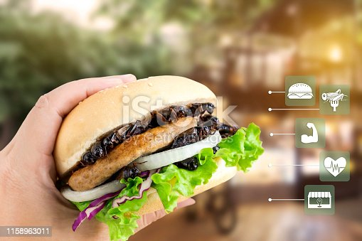 istock Crickets insect for eating as food items made of cooked insect in burger on woman's hand with media icons symbol nutrition for fast food, is good source of protein edible. Entomophagy concept. 1158963011