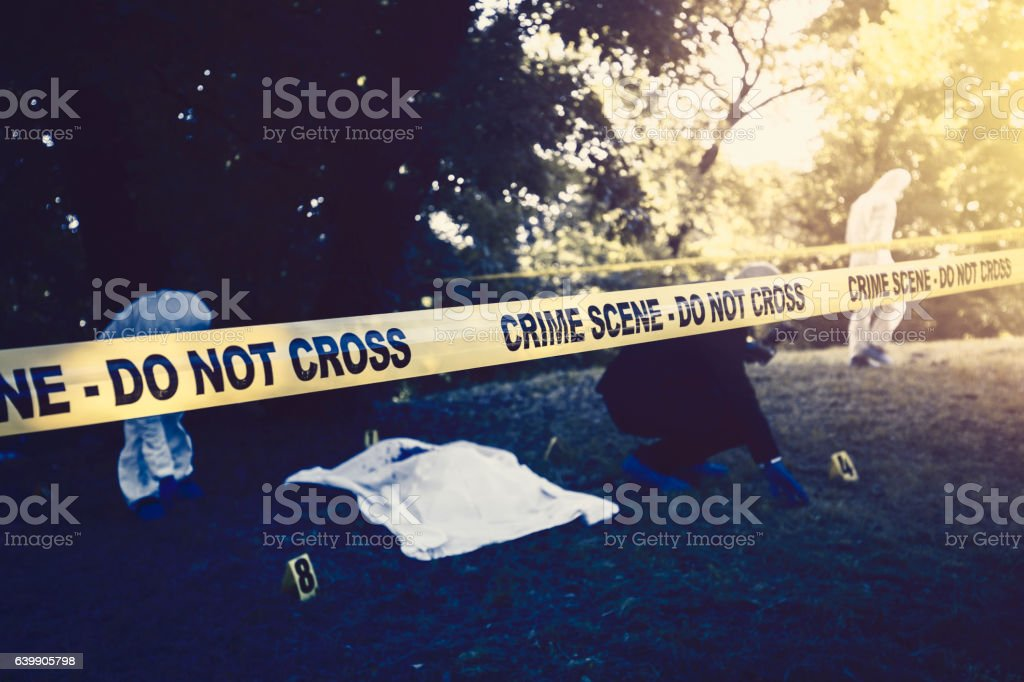 Crime scene in the woods stock photo