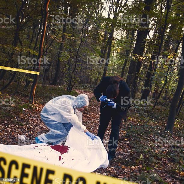 Crime Scene Investigation Stock Photo - Download Image Now