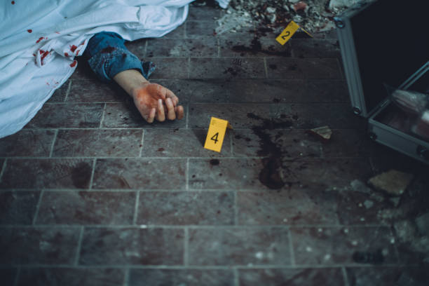 crime scene - killer stock pictures, royalty-free photos & images