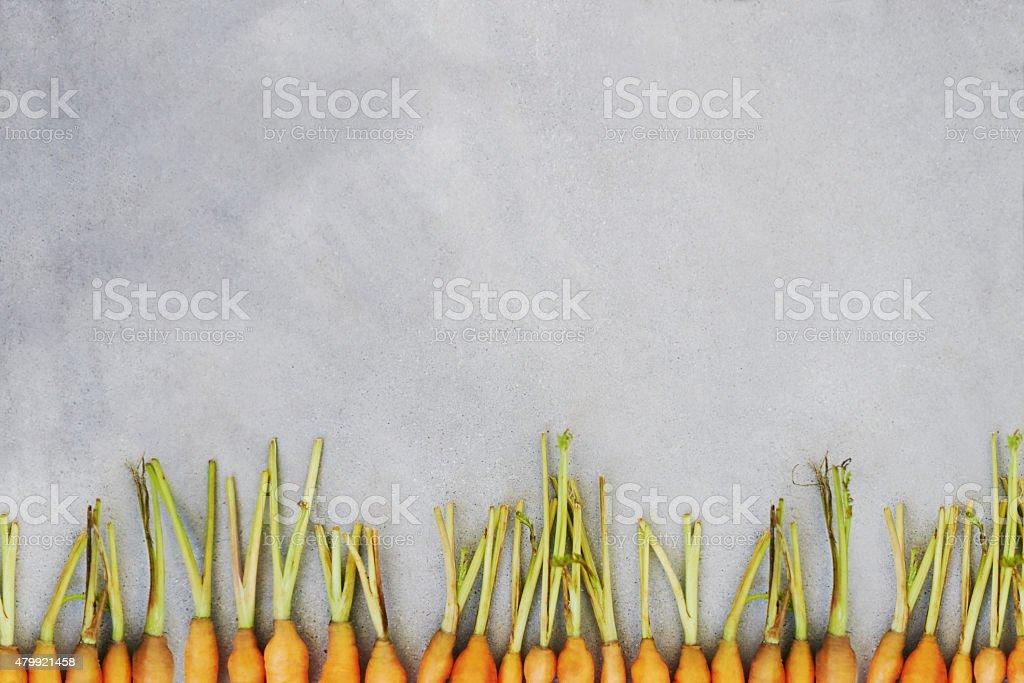 Crisp and crunchy carrots stock photo