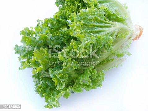 Crisp Lettuce - Romain