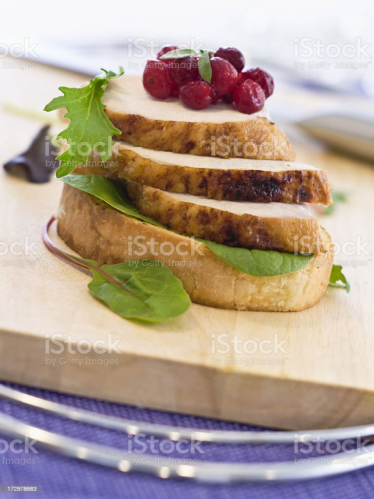 Crispy Skin Open Turkey Cranberry royalty-free stock photo