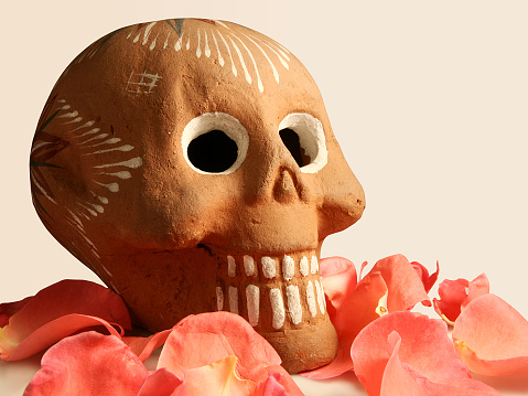 Cráneo de barro - Skull and flowers