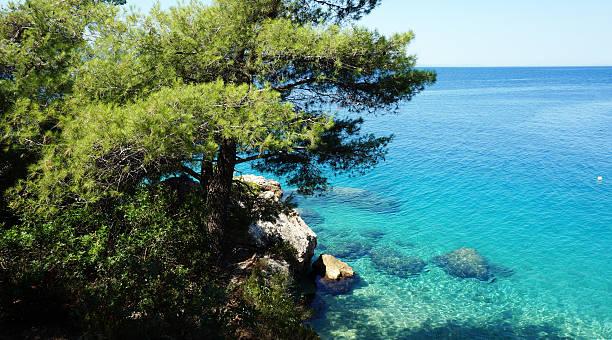 Croatian beach stock photo