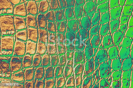 istock Crocodile Leather Abstract Dragon Dragon Dinosaur Snake Alligator Reptile Texture Ombre Green Brown Beige Background 1136057310