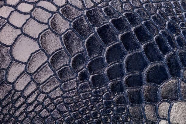 Patrón de piel azul de piel de cocodrilo - foto de stock