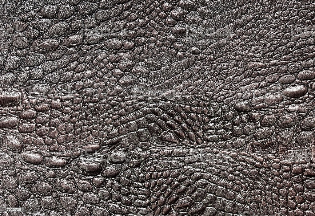 Crocodile leather stock photo
