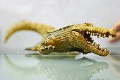 Crocodile model in run action ,selective focus