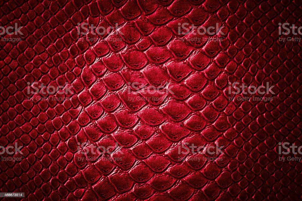 Crocodile red skin  texture stock photo