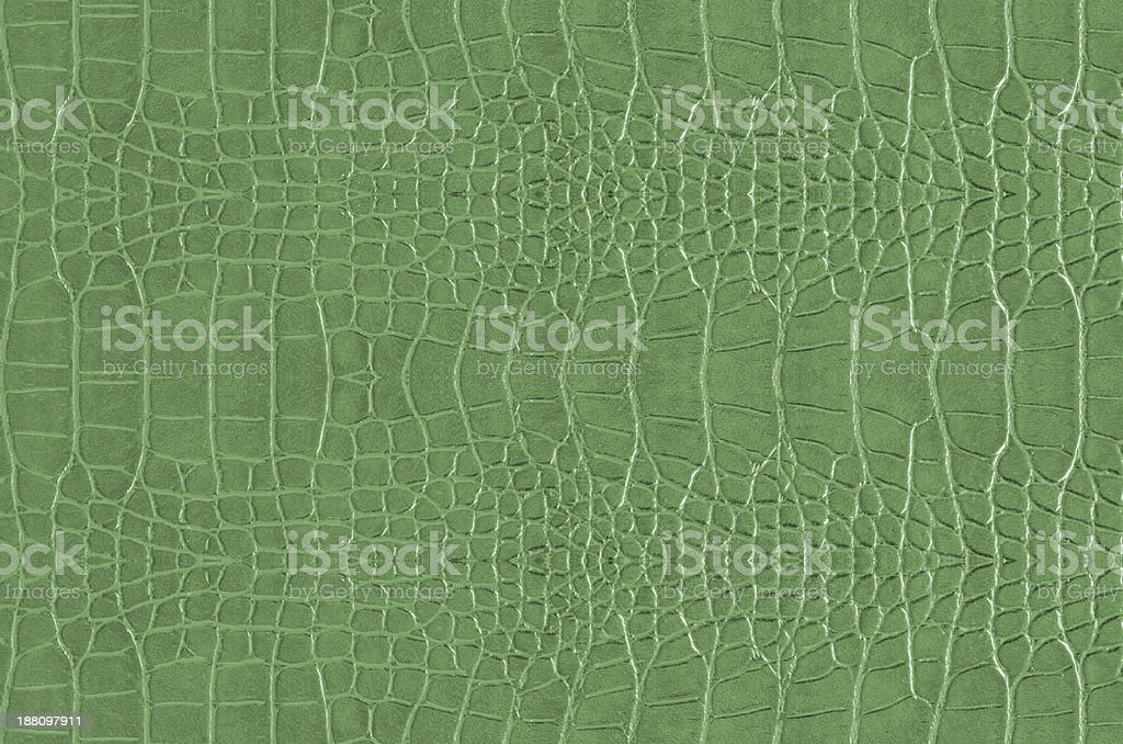 Crocodile Skin stock photo