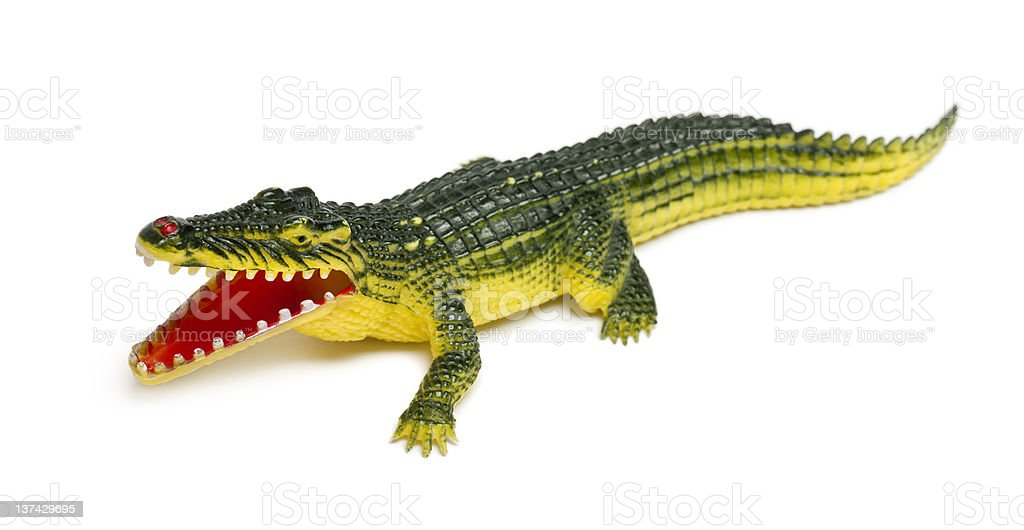 Crocodile toy in front of white background royalty-free stock photo