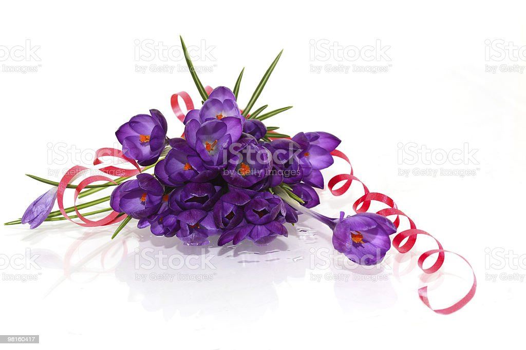 Crocus Bouquet royalty-free stock photo