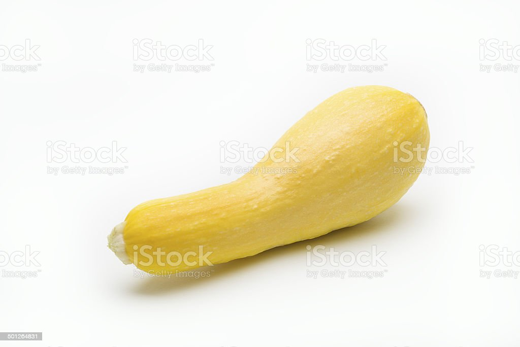 crookneck squash stock photo