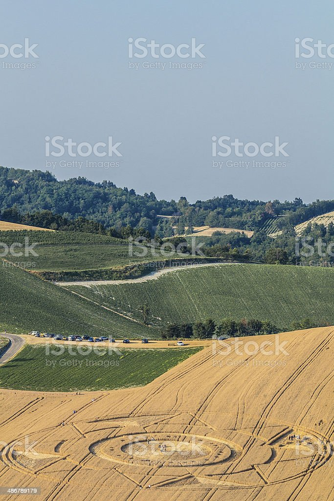 Crop Circles in Italy. stock photo