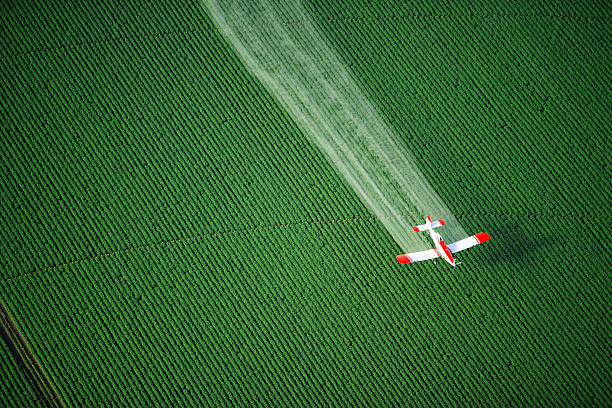 Crop duster plane in action in a field stock photo
