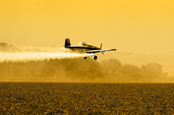 Crop Duster Silhouette stock photo