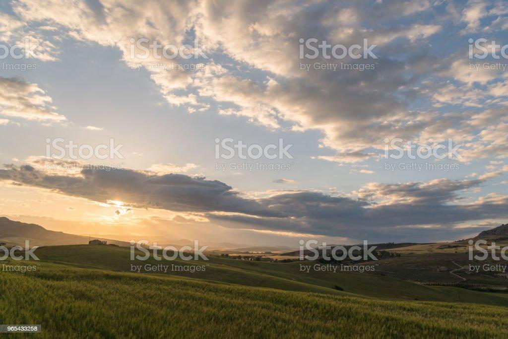 ferme de culture pendant le coucher du soleil - Photo de Agriculture libre de droits