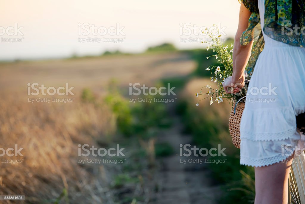 Crop of woman driving bicycle through field of wheat stock photo