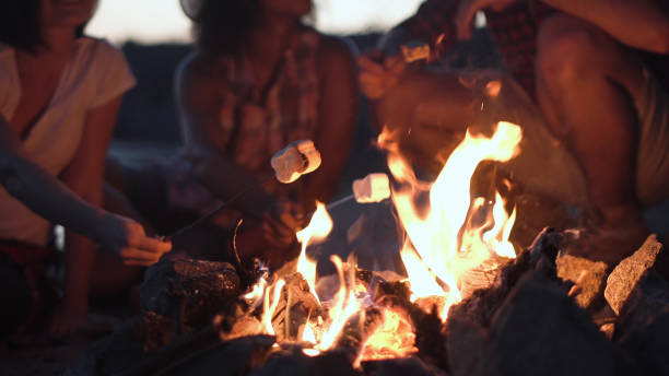 crop people grilling marshmallows in fire - falò foto e immagini stock