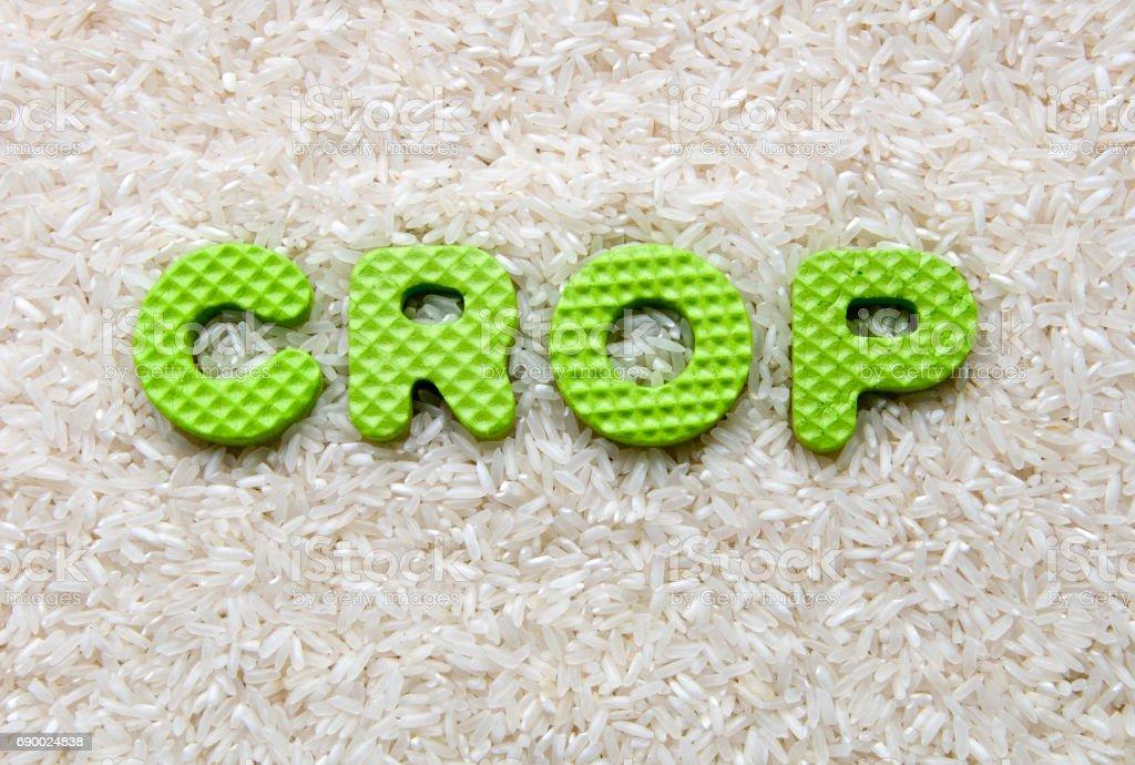 crop sign stock photo