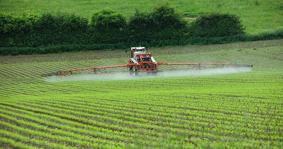 Crop Spraying Stock Photo - Download Image Now