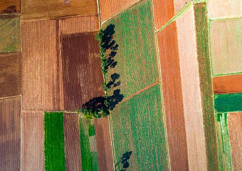 istock Cropfields in Mantaro valley in Huancayo, Peru 1169012918