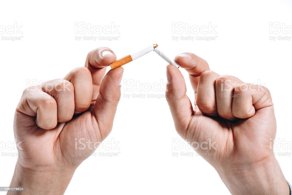 cropped image of man breaking unhealthy cigarette isolated on white stock photo