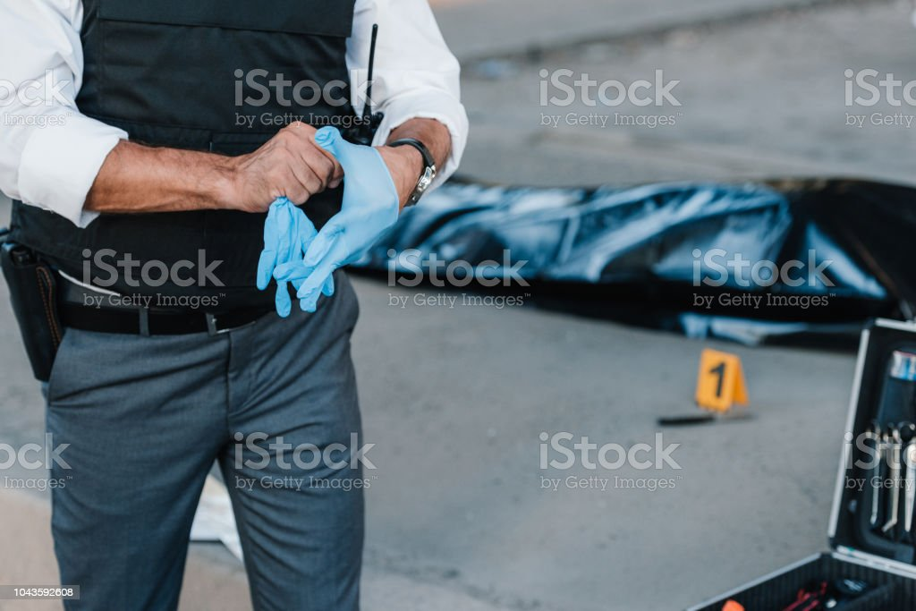 cropped image of policeman with gun in holster putting on latex gloves at crime scene with corpse in body bag stock photo
