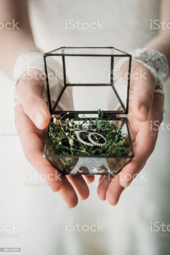 cropped shot of bride in white dress with wedding rings in box in hands zbiór zdjęć royalty-free