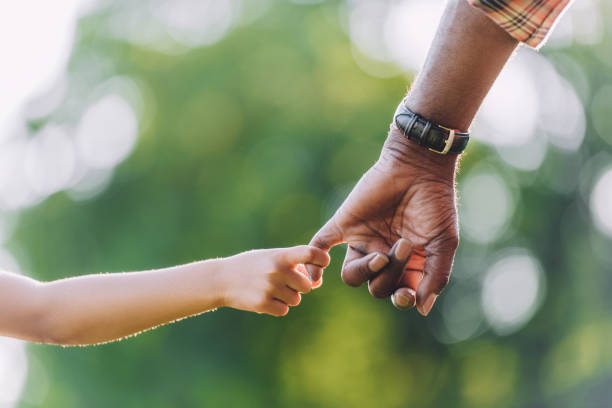 cropped view of african american grandfather holding hands with little granddaughter stock photo