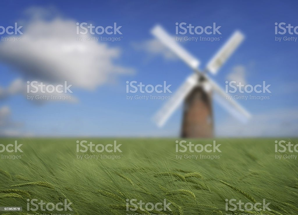 Crops and windmill royalty-free stock photo