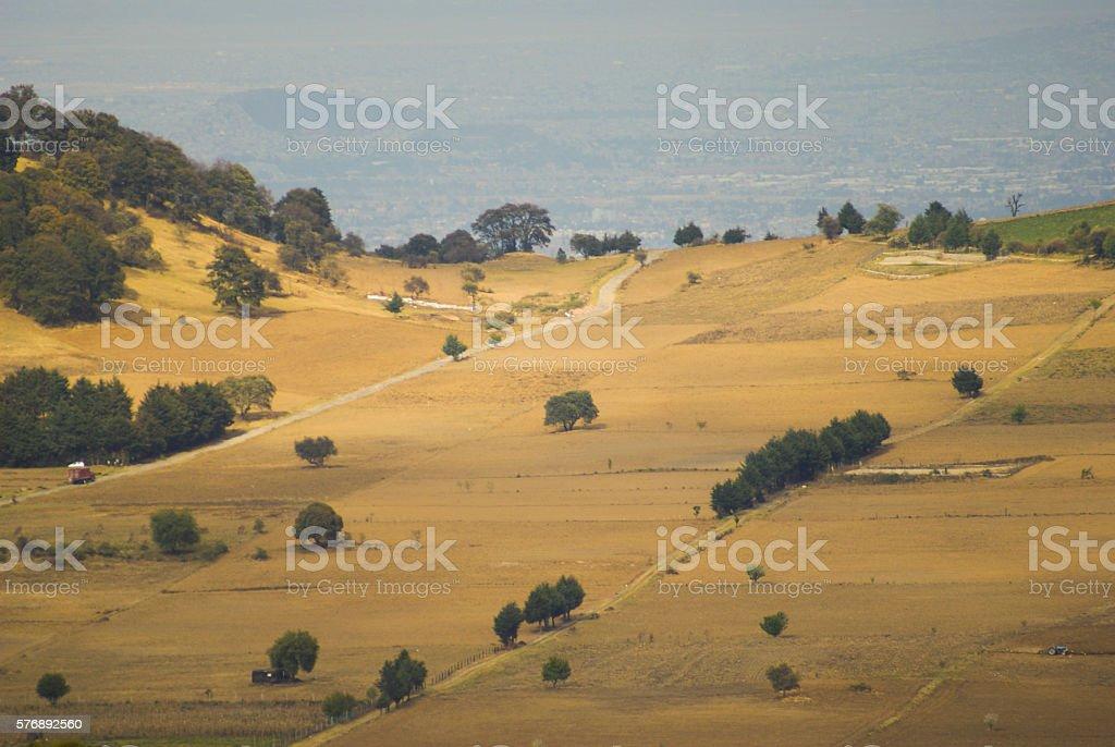 Cultivos stock photo