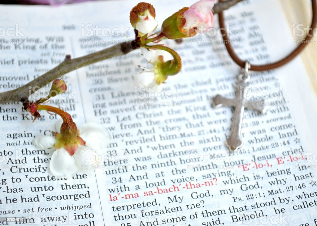 Cross and flower crucifixion according to Mark stock photo