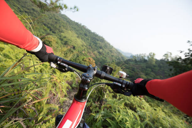 Cross country biking cyclist arms holding handlebar riding mountain bike downhill on tropical forest trail slope stock photo