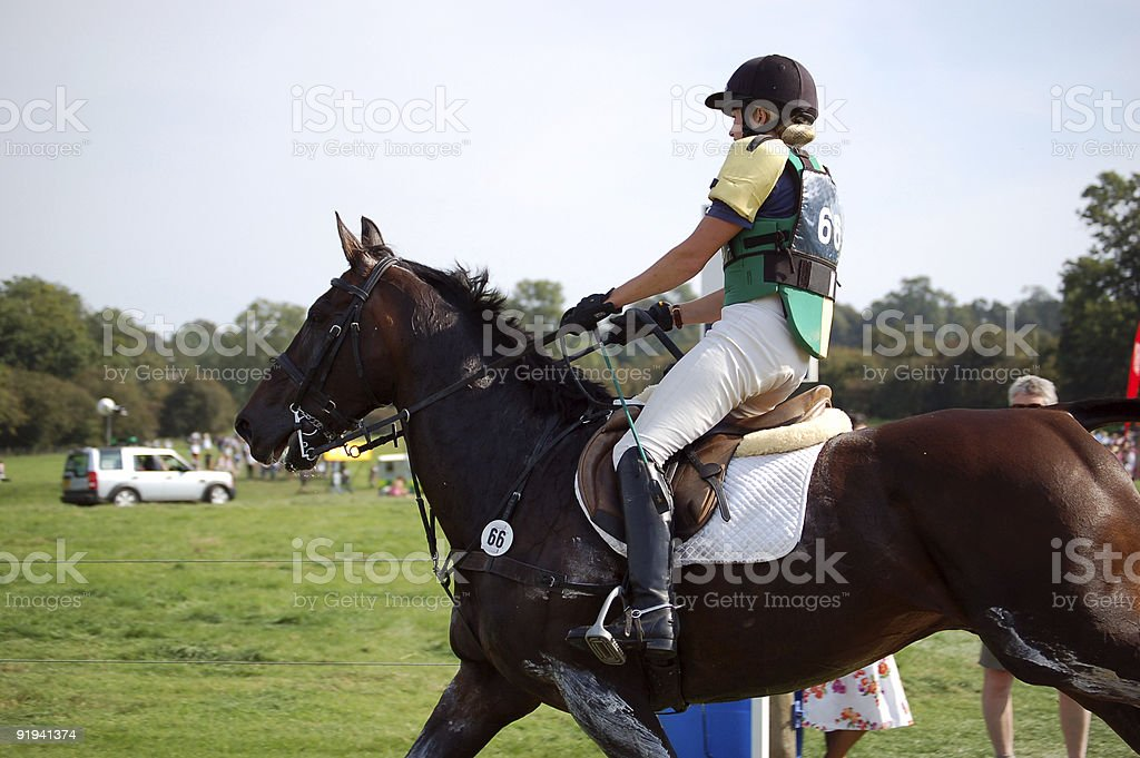 Cross country horse and rider stock photo