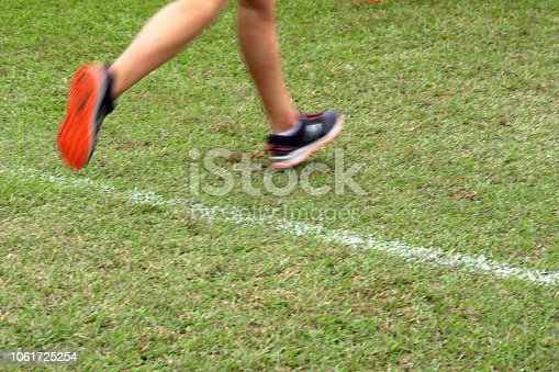 976685710istockphoto Cross Country Runners Running outdoors 1061725254