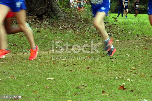 976685710istockphoto Cross Country Runners Running outdoors 1061725378