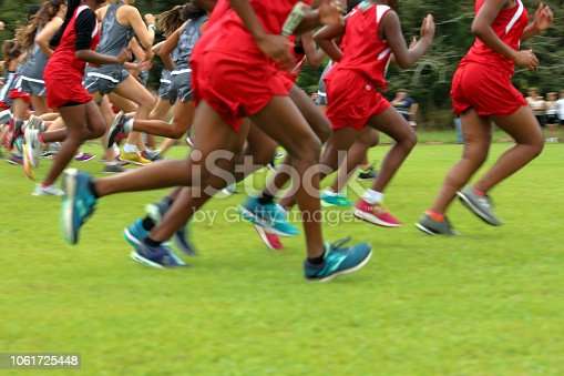 976685710istockphoto Cross Country Runners Running outdoors 1061725448
