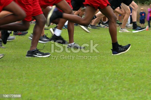 976685710istockphoto Cross Country Runners Running outdoors 1061725556