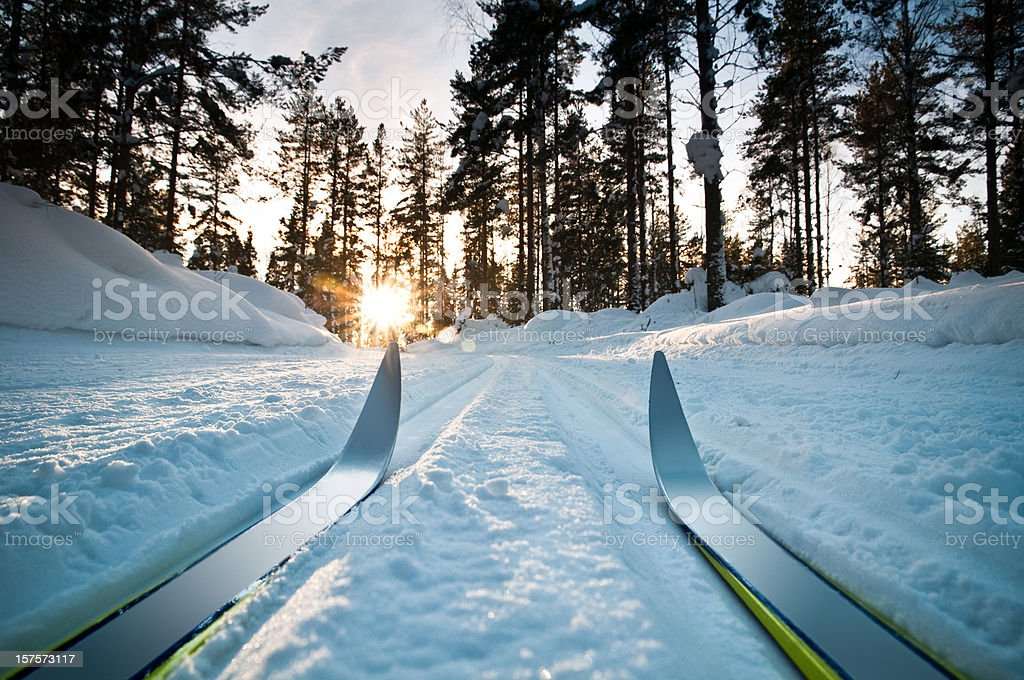 Cross Country Ski stock photo