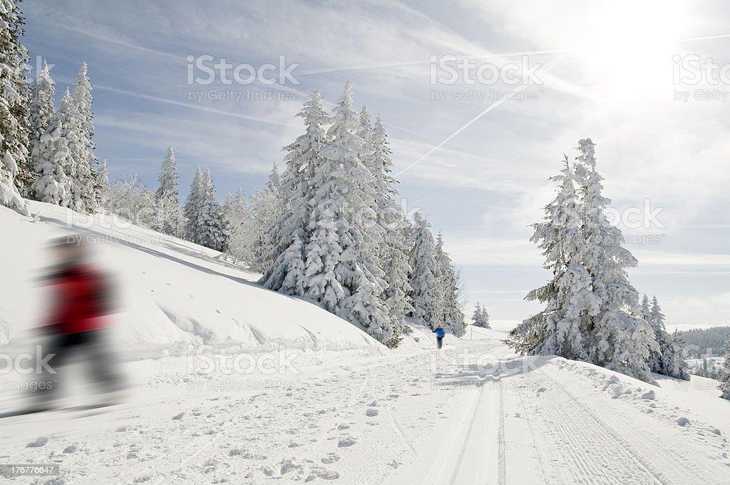 Langlauf ski – Foto