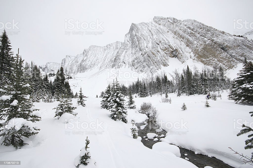 Cross Country Ski Trail royalty-free stock photo