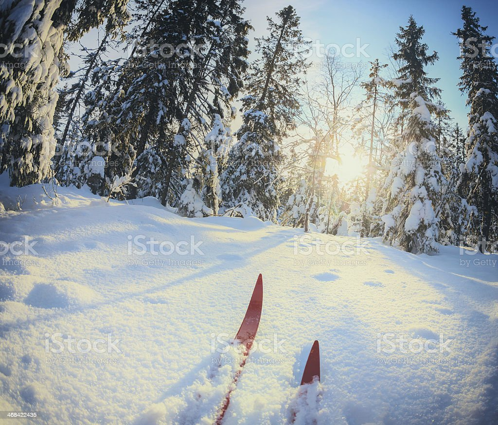 A cross country skier in Oslo, Norway stock photo