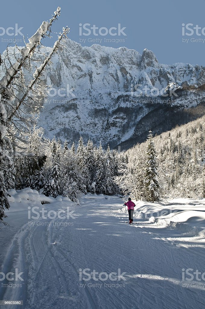 Cross Country Skiing Alps royalty-free stock photo