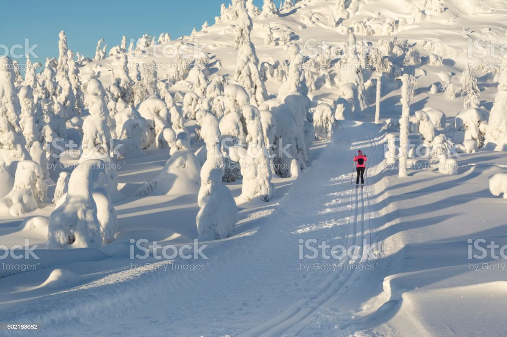 Cross country skiing in Lapland Finland stock photo