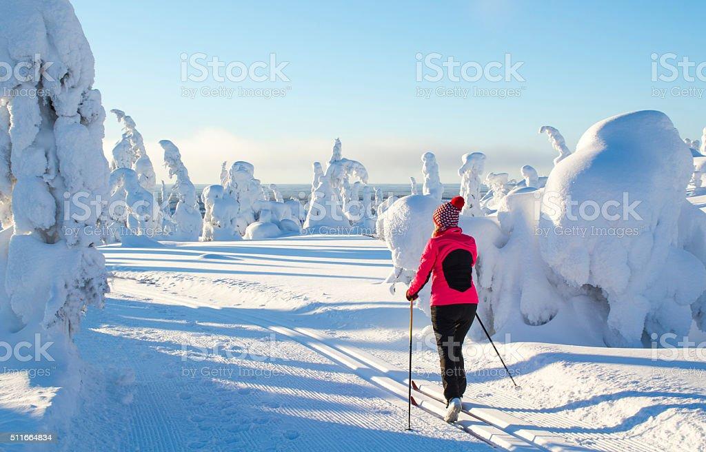 Cross country skiing on mountain stock photo